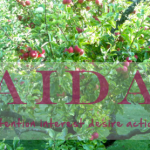 AIDA i internkommunikationen
